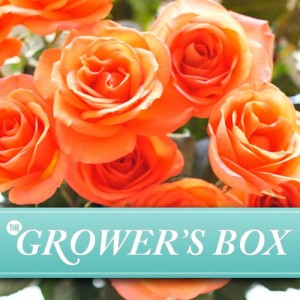 growers box