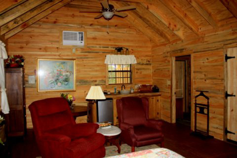 Ethridge Farm Cabin on Mayhaw Ridge a